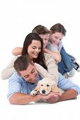 image of puppies mother dog  - Happy family looking at puppy while lying on top of each other over white background - JPG