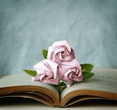 stock photo of three life  - Valentine Abstract with Three Pink Roses are on Vintage Book - JPG