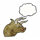 foto of bull head  - cartoon angry bull head with thought bubble - JPG