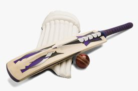 picture of cricket shots  - Close - JPG