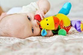stock photo of teething baby  - sweet blue - JPG