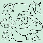 A set of 7 vector illustrations of animals in unique exquisite and ornamental style.
