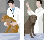 A set of 2 veterinary illustrations.
