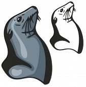 Vector illustration of a seal.