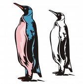 Vector illustration of a penguin.