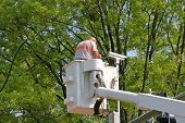 picture of traffic signal  - A man in a lift bucket installing a traffic camera on a traffic light - JPG