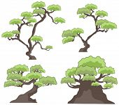 Vector tree designs in a single style. Check my portfolio for more of this series as well as thousan