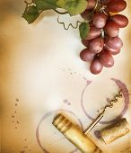 picture of grape-vine  - Wine Cork - JPG