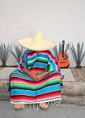 Mexican lazy man sit serape agave guitar nap siesta typical topic