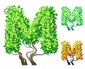 Vector illustration of an extra detailed tree alphabet symbols. Easy detachable crown. character m