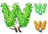 Vektor-Illustration eine zusätzliche detaillierte Baum Alphabet Symbole. Leicht abnehmbare Krone. Zeichen w