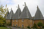 Four Oast Houses