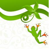 fun jumping frog - decorative pattern behind