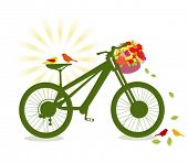 birds on a bicycle with basket of flowers