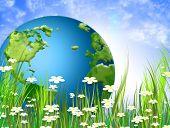 Flores de primavera salvaje verde prado y mundo verde