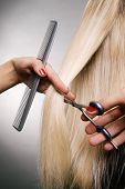 stock photo of hair cutting  - professional hairdresser in the work - JPG