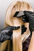 hairdresser doing hair dye. photo against grey background