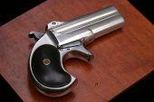 ââ?¬Å?Circa 1889, Model 95, Type II Model 3 Double Derringerââ?¬Â