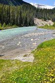 Vermilion river at Kootenay National Park, Canada