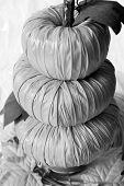 Pumpkin Decoration Bw F
