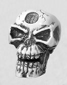 Skeleton Head Bw F