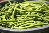 image of sweetpea  - string beans fresh harvested - JPG