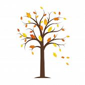 Autumn Tree With Yellow And Orange Fallen Leaves Isolated On A White Background Vector Illustration  poster