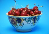 pic of bing  - fresh picked bing cherries in a bowl with a blue background - JPG