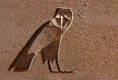 Egyptian Hieroglyph in the shape of on eagle owl on an obelisk in the Temple of Amun in Karnak near Luxor (Thebes), Egypt
