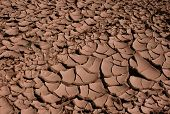 Cracked dried earth in the oasis of Skoura, Morocco