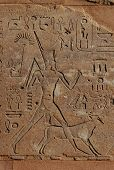 Queen Hapshepsut, relief from Hatshepsut's Red Chapel in Karnak Temple near Luxor, Egypt