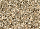 Sand beach texture