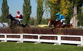 Horses are jumping over hurdle during the race Velka Pardubicka 2007