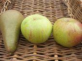 1 Pear 2 Apples