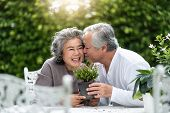 Portrait Of Asian Senior Man Kissing His Wife. Older Couple Enjoying With Planting Flower In The Gar poster
