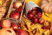 autumn harvest - fruits and vegetables are on fallen yellow leaves, apples, pumpkins, rowan and pepp poster