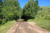 Dirt Road Enters The Taiga  On A Sunny Summer Day. Siberia poster