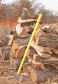 Cut and split fire wood drying in an open pile with a splitting maul leaning against the pile