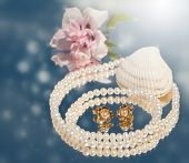 Dreamy image of golden pearl earrings with pearl necklace, seashell and a pale pink flower