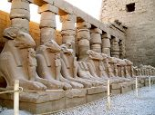 Statues, Temple of Karnak, Luxor (Thebes), Egypt