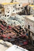 Ancient tradition of leather taning works in Fez, Morocco