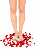 Beautiful woman legs and petal of rouses