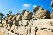 Nandi on stone fence,  detail of Shore temple  in Mamallapuram, Tamil Nadu , India