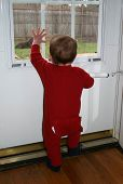 Toddler Looking Out Window 001 poster