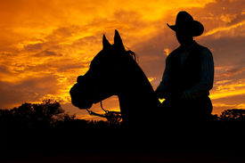 stock photo of horse-riders  - Silhouette of a horse and a rider against dramatic evening storm clouds - JPG