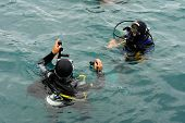 Scuba Divers Scuba Dive In Sea