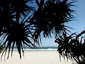 Beach From Shade
