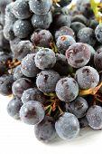 Seedless Coronation Grapes