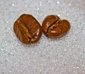 Coffee Bean Sugar