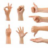 Set Of Gesturing Hands
